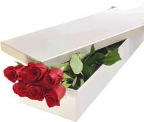 dozen roses gift box wrapped arrangement