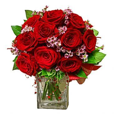 Dozen Roses Impact Style Vase