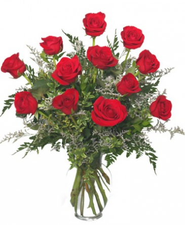 DOZEN ROSES IN A VASE Special Price!!!