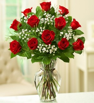 Dozen Roses Vase Arrangement in Saint Paul, MN | CENTURY FLORAL & GIFTS