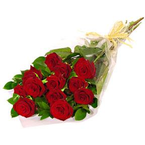Dozen Roses Wrapped Cut Bouquet
