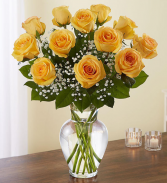 DOZEN ROSES YELLOW