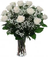 Dozen white Roses arranged in a vase with  baby's breath.