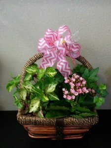 Dragonfly Basket Exclusively at Mom & Pops in Ventura, CA | Mom And Pop Flower Shop