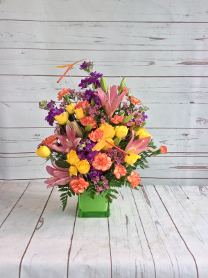 Dragonfly Days  in Culpeper, VA | ENDLESS CREATIONS FLOWERS AND GIFTS