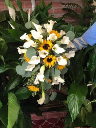 Dream maker mini calla and sunflower bouquet  Cascading Brides bouquet