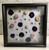 Dried Blooms  Shadow Box