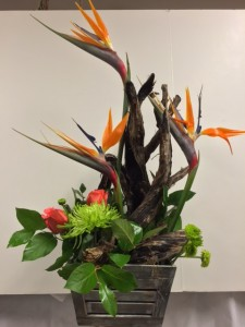 Driftwood Birds of Paradise Modern Tropical in Omaha, NE | ALL SEASONS FLORAL & GIFTS