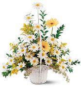 Drop of Sunshine Basket Basket Arrangement