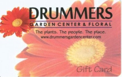 Drummers Gift Card Request this special gift in any amount.