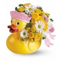 Ducky Delight Baby Girl
