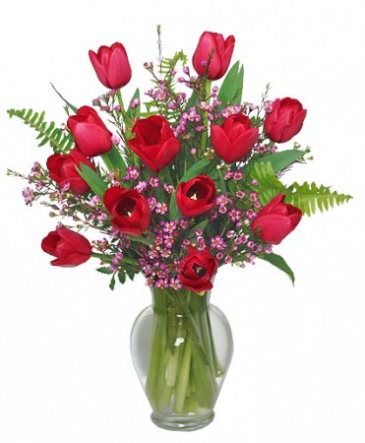 Dynamic Duo Red Tulips and Waxflower