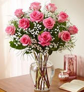 One Dozen Perfectly Pink Roses