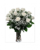 DZ WHITE ROSES
