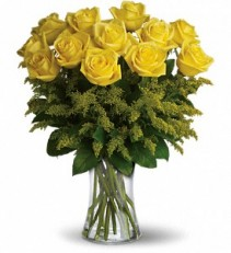 Roses  12 Yellow