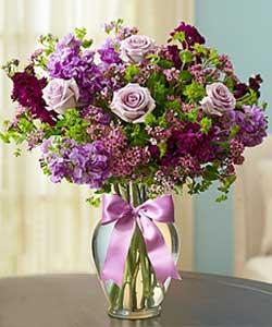 Shades of Purple Best Sellers