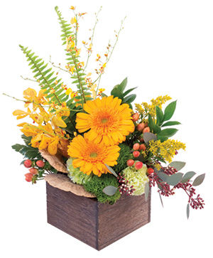 Earthy Indulgence Floral Arrangement in Nevada, IA | Flower Bed