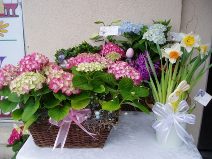 Easter basket blooming potted plants in lincroft nj lincroft fab easter basket blooming potted plants negle Choice Image