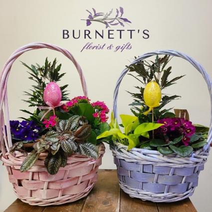 Easter Basket Planter Planter