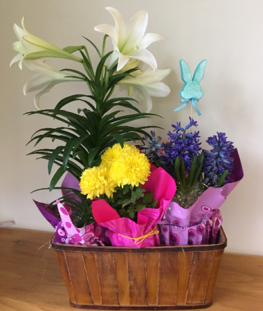 Easter Blooming Plant  Combination  Basket