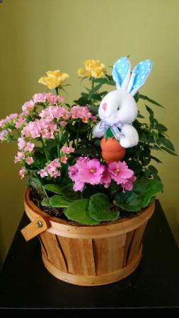 Easter Bunny Basket Planter