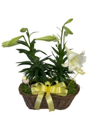 Easter Lily Basket   in Silverton, OR | Julie's Flower Boutique
