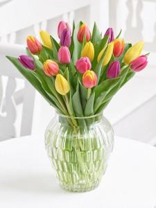 Dutch Tulip  Vase