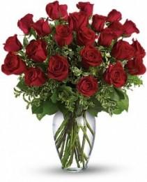 Always on My Mind - Long Stemmed Red Roses EF15