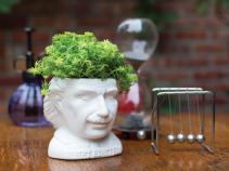 """Einstein planter for 2"""" plants"""