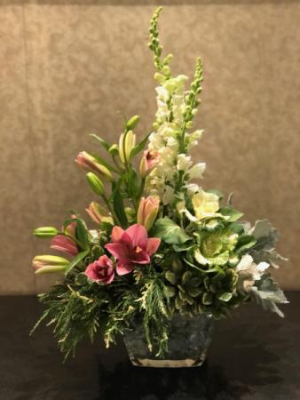 Elegance In Bloom