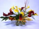 Elegance Mini Calla Lily  Modern Colorfull vase