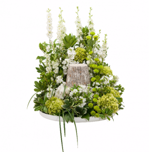 Elegance Surround Surround in Swannanoa, NC | The Asheville Florist