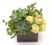 Elegant Complement Design Flower and Succulent Arrangement