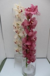 Elegant Cymbidium Orchid Cylinder Fresh Arrangement