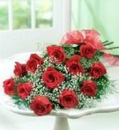 Elegant Dozen,  Wrapped Red,  Pink, Yellow, or Lavender