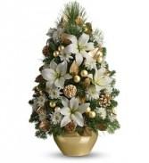 Elegant Gold and White Boxwood Christmas