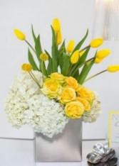 Elegant in Spring