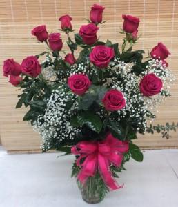 Elegant Long stem Hot Pink Roses