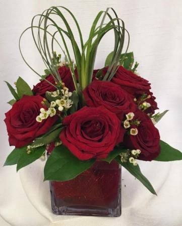 Elegant Love Valentines Special 2019