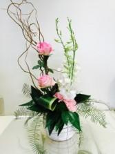 Elegant Orchids Valentine's Special