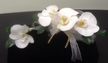 Elegant Phalaenopsis Orchid Wrist Corsage $50  and Boutonniere $10