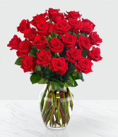 Elegant Red Rose Red Rose  Arrangements