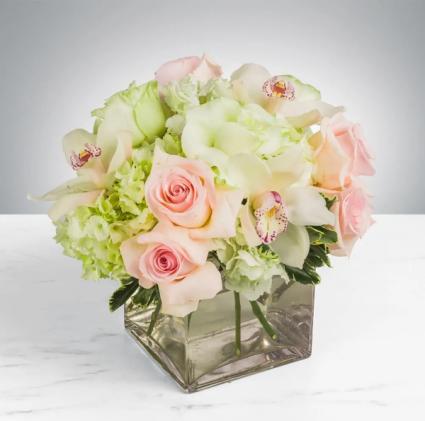 ELEGANT ROSES AND MORE Roses, Hyrdangea & More