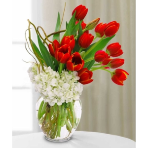 Elegant Tulips Arrangement in Croton On Hudson, NY | Cooke's Little Shoppe Of Flowers