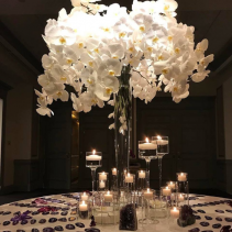 Elevated Centrepieces & Deco