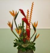 Elite Tropical Expression Memorable Moment Bouquets
