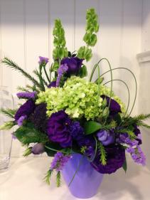 Ellegant purple All occasion