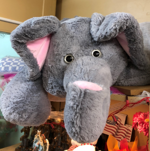 Ellie The CUTEST elephant EVER! in Springfield, IL | FLOWERS BY MARY LOU INC