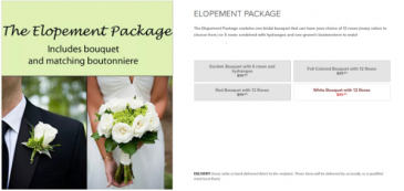 Elopement Package Wedding