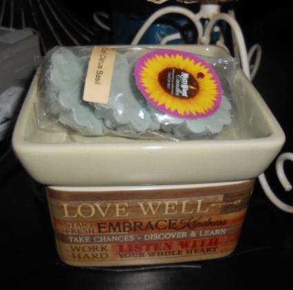 Embrace Life Warmer & 28Wax Tarts